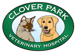 Clover Park Veterinary Hospital